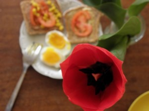 śniadanie z tulipanem